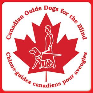 London drugs helps guide dog group   delta optimist.